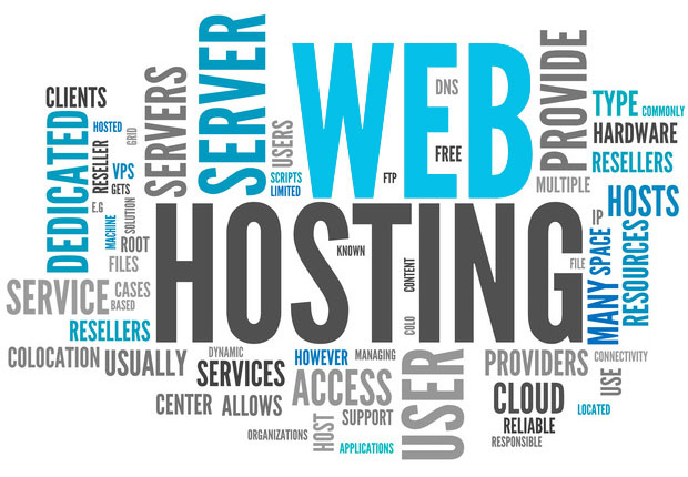 Web Hosting Company In Jaipur