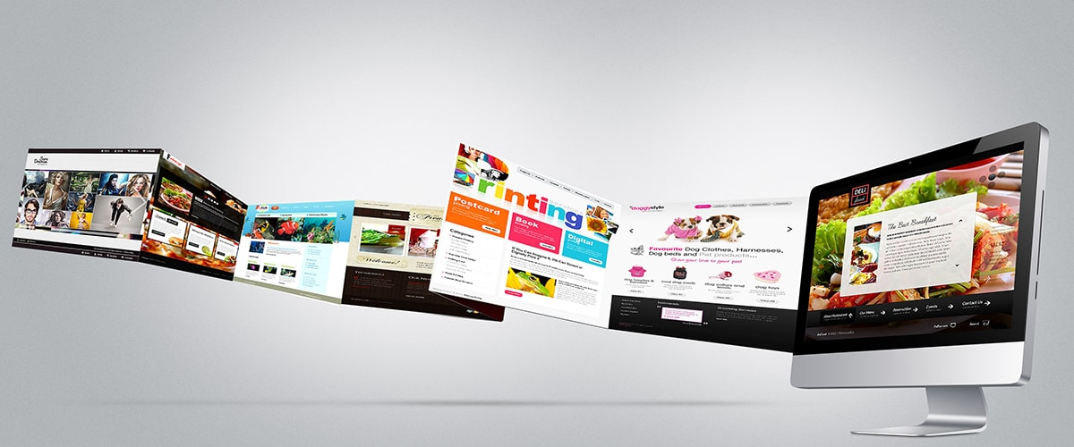 Web Design Development Company In Jaipur